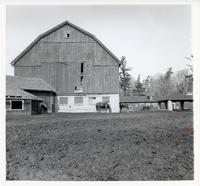 UTSC's stable with horses in front