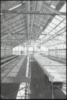 Interior of empty greenhouse